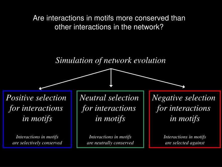 Are interactions in motifs more conserved than