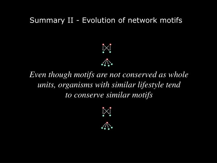 Summary II - Evolution of network motifs