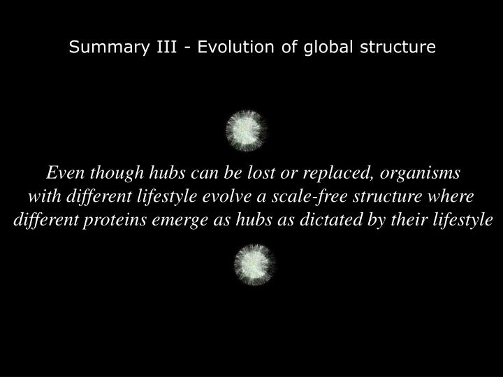 Summary III - Evolution of global structure