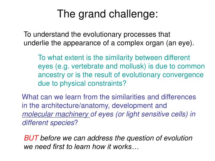 The grand challenge: