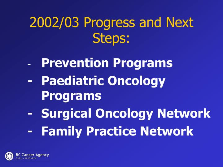 2002/03 Progress and Next Steps: