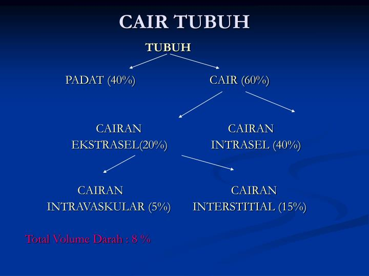CAIR TUBUH