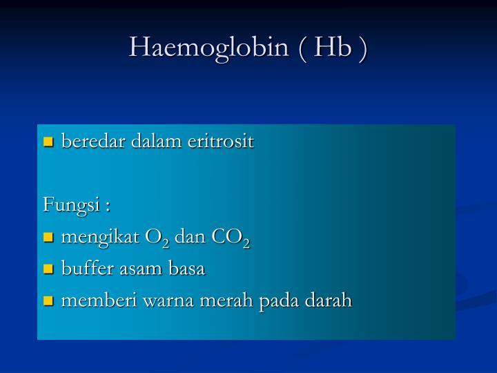 Haemoglobin ( Hb )