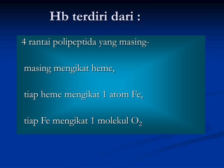 Hb terdiri dari :