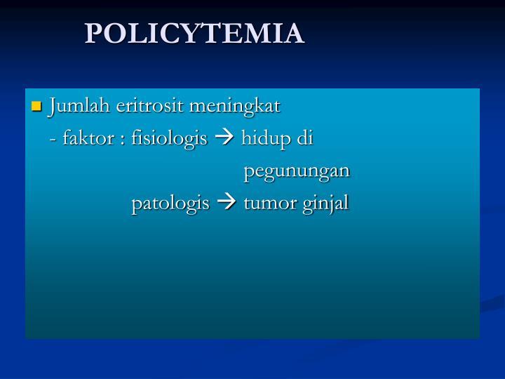 POLICYTEMIA