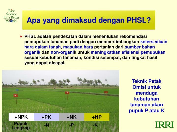 Apa yang dimaksud dengan PHSL?