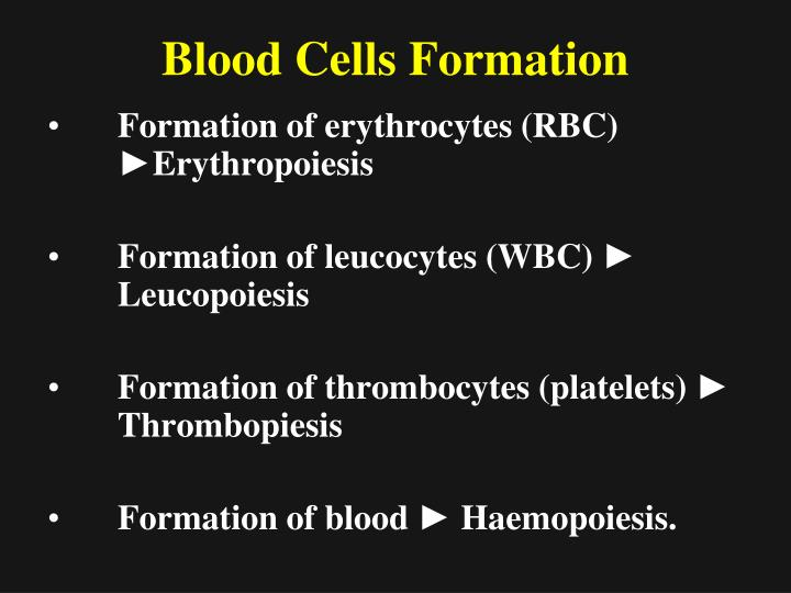 Blood Cells Formation