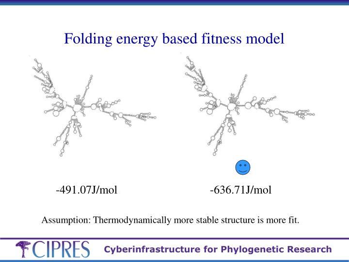 Folding energy based fitness model