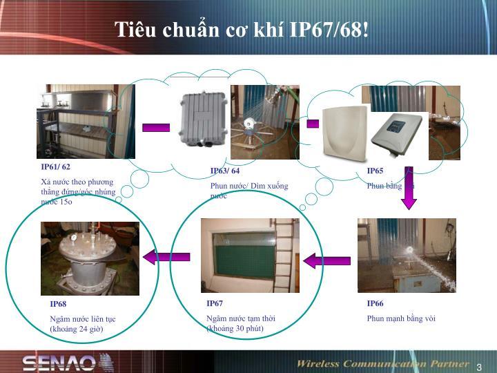 IP61/ 62