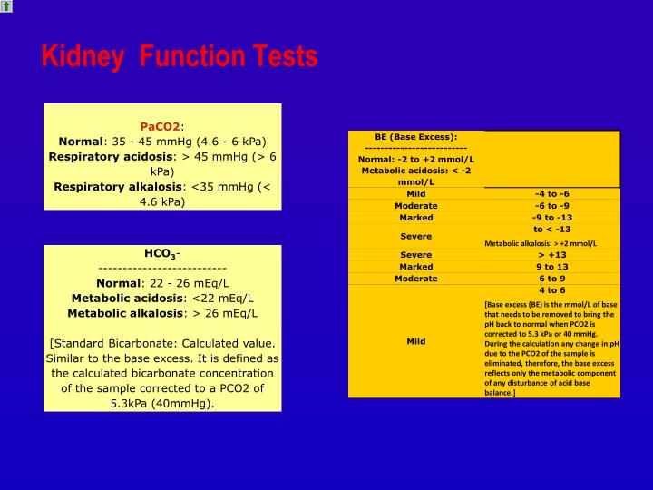 creatinine clearance test to estimate renal function Kidney function test helps your doctor to determine how  and creatinine clearance, which is an estimate of  a study called modification of diet in renal.