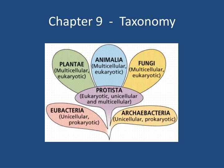 Chapter 9 taxonomy