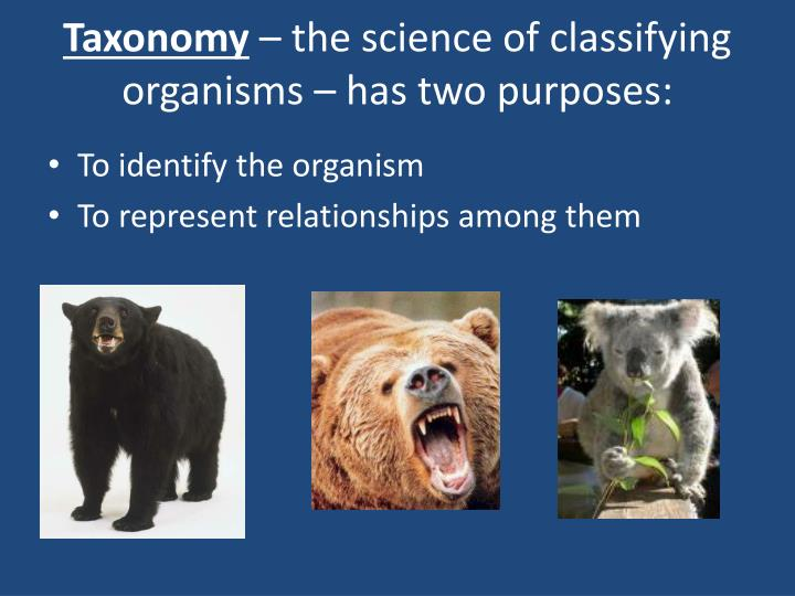 Taxonomy the science of classifying organisms has two purposes