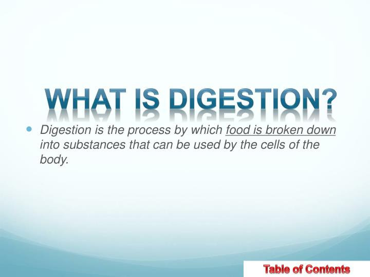 What is DIGESTION?