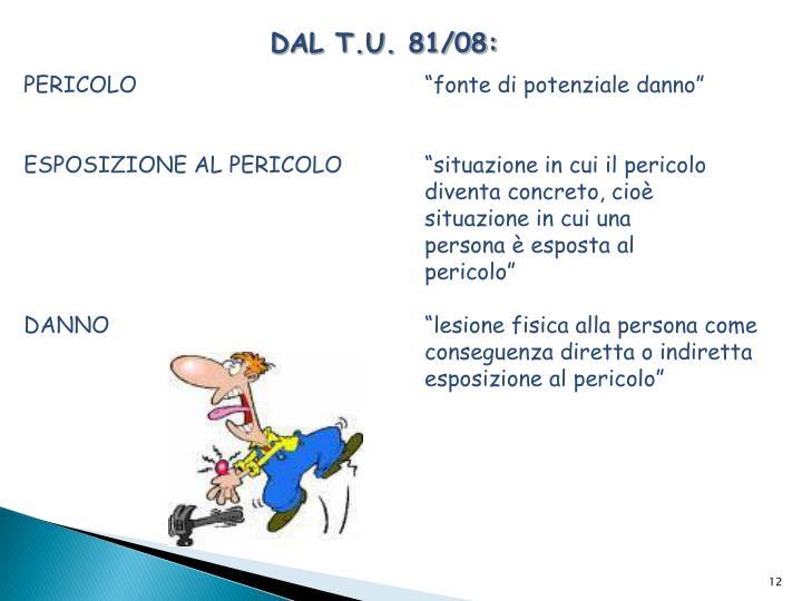DAL T.U. 81/08: