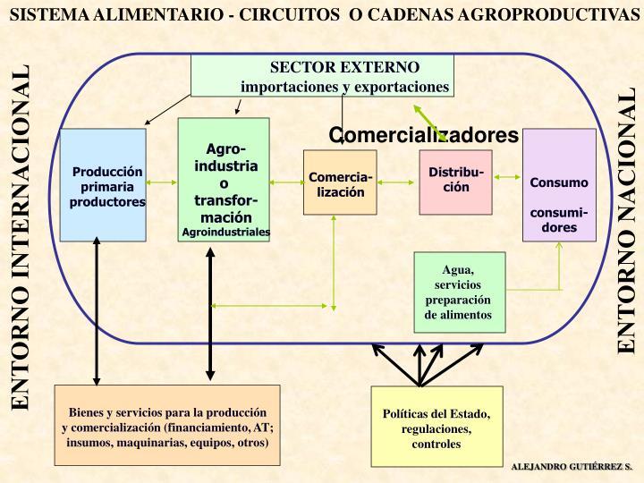 SISTEMA ALIMENTARIO - CIRCUITOS  O CADENAS AGROPRODUCTIVAS