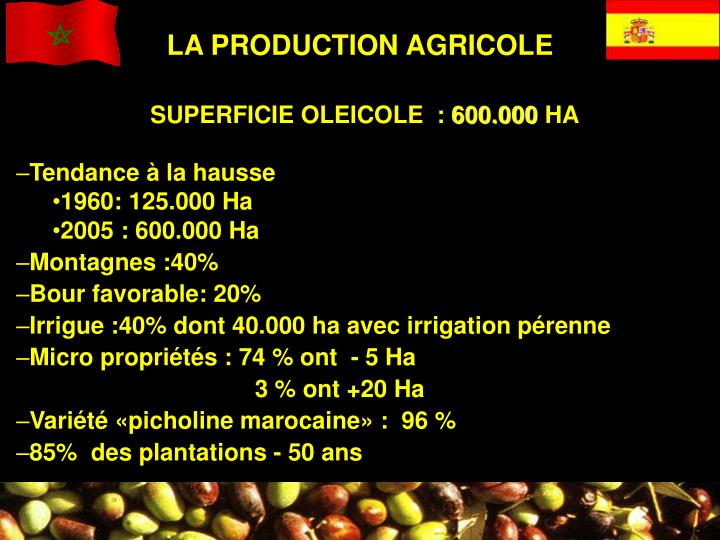 LA PRODUCTION AGRICOLE