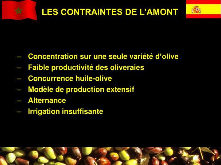 LES CONTRAINTES DE L'AMONT