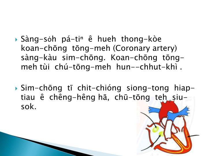 Sàng-sȯh  pá-tiⁿ  ê  hueh  thong-kòe          koan-chōng  tōng-meh (Coronary artery)  sàng-kàu  sim-chōng.  Koan-chōng  tōng-meh tùi  chú-tōng-meh  hun--chhut-khì .
