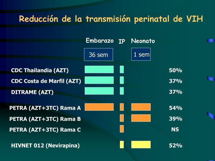 Reducción de la transmisión perinatal de VIH