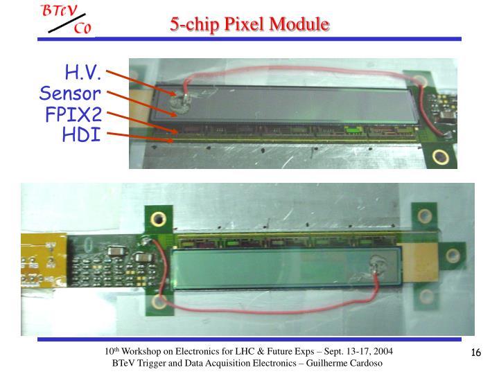 5-chip Pixel Module
