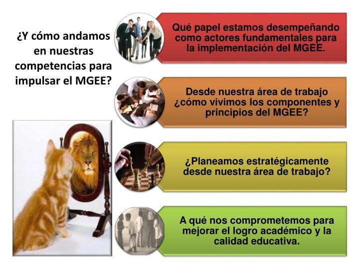 ¿Y cómo andamos en nuestras competencias para impulsar el MGEE?