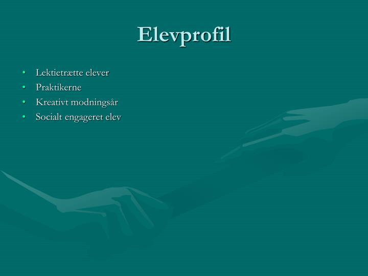 Elevprofil