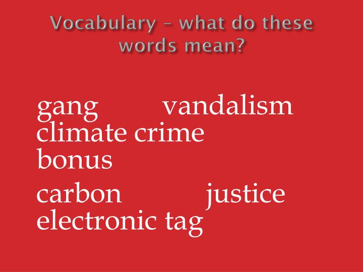 Vocabulary – what do these words mean?