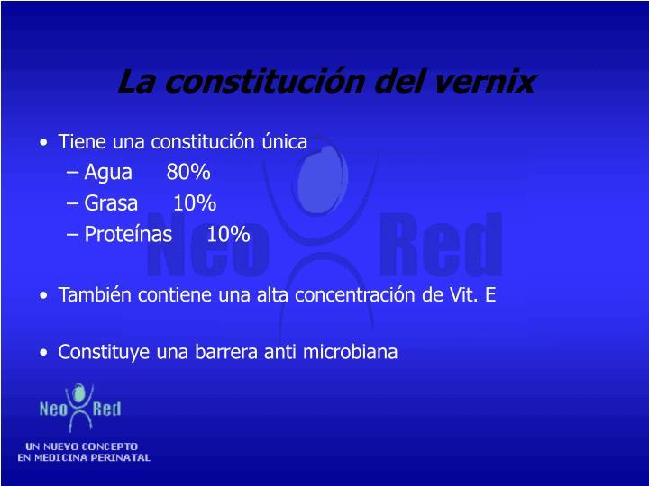 La constitución del vernix