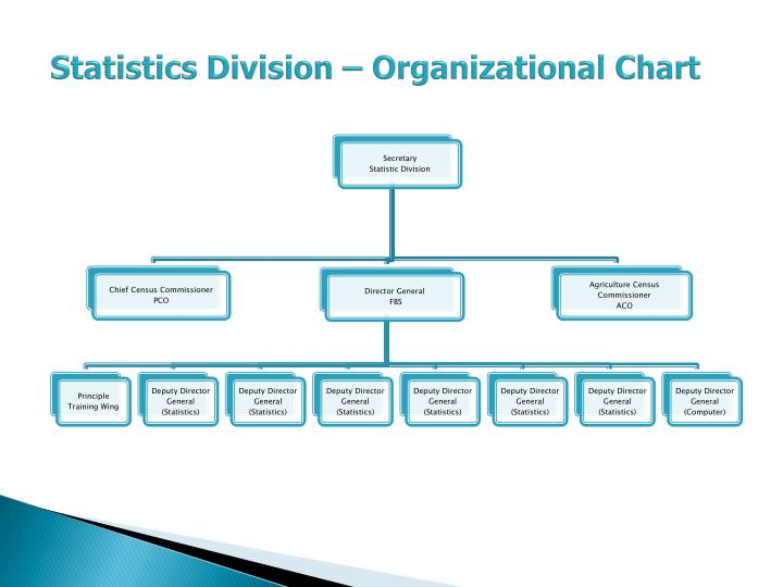 Statistics Division – Organizational Chart