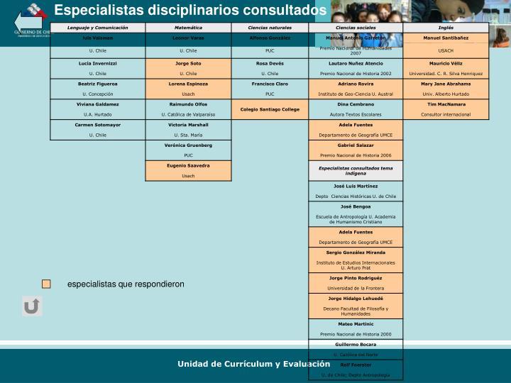 Especialistas disciplinarios consultados