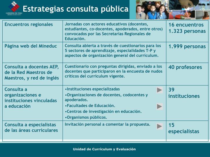 Estrategias consulta pública
