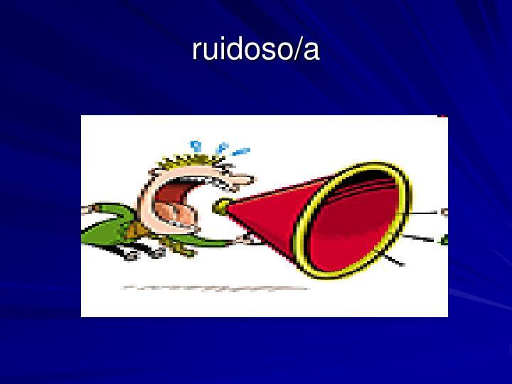 ruidoso/a