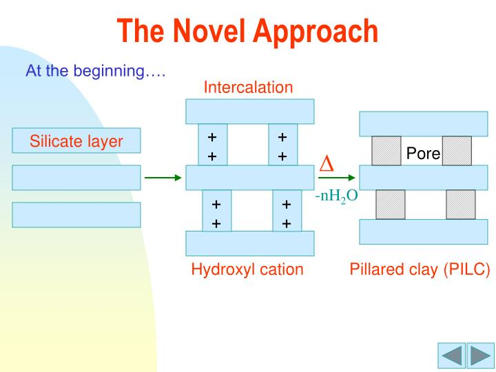 The Novel Approach