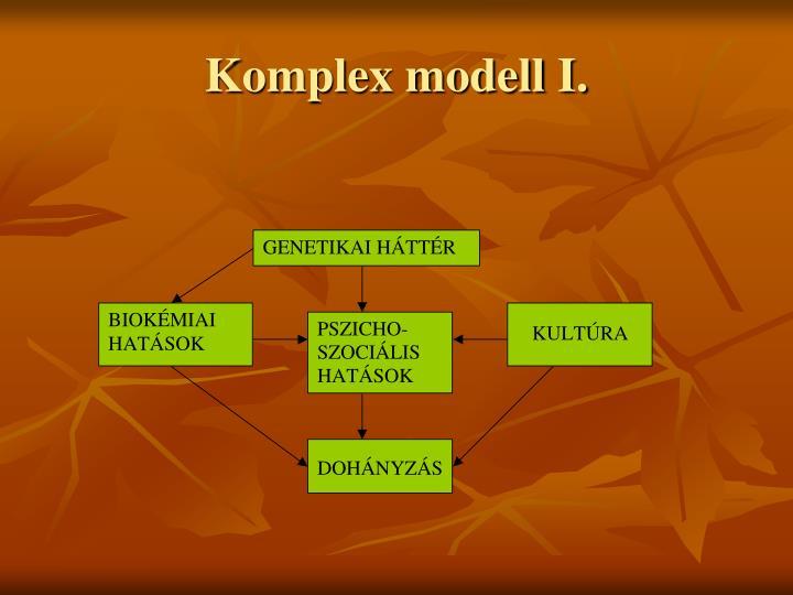 Komplex modell I.