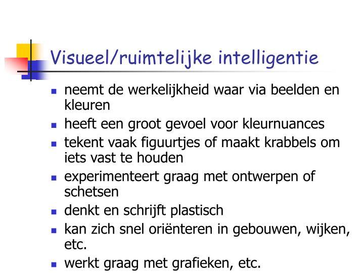 Visueel/ruimtelijke intelligentie