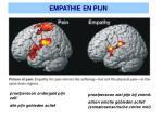 empathie en pijn