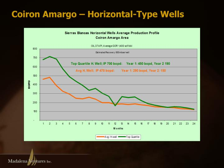 Coiron Amargo – Horizontal-Type Wells