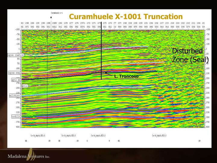 Curamhuele X-1001 Truncation
