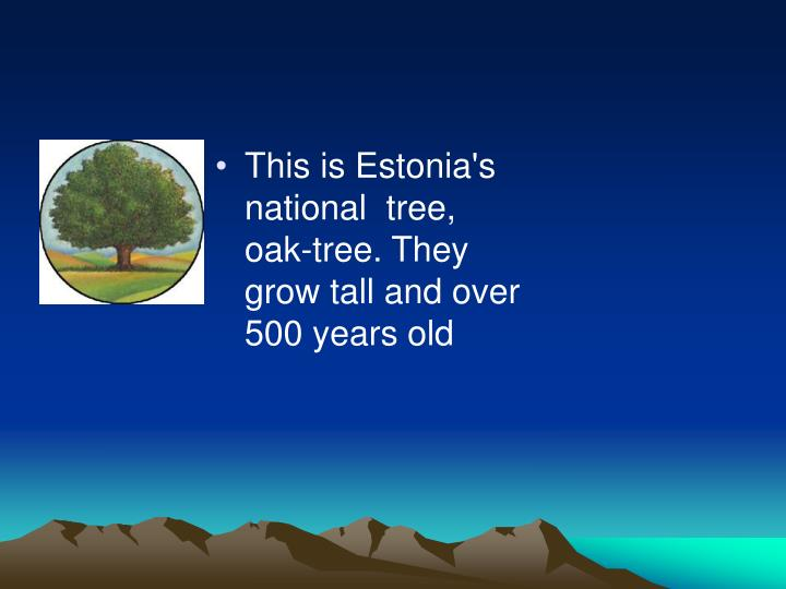 This is Estonia's national  tree