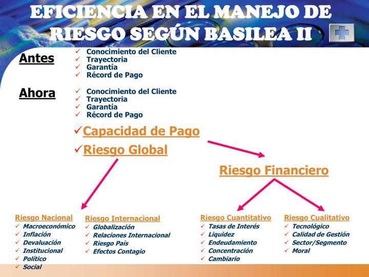 EFICIENCIA EN EL MANEJO DE RIESGO SEGÚN BASILEA II