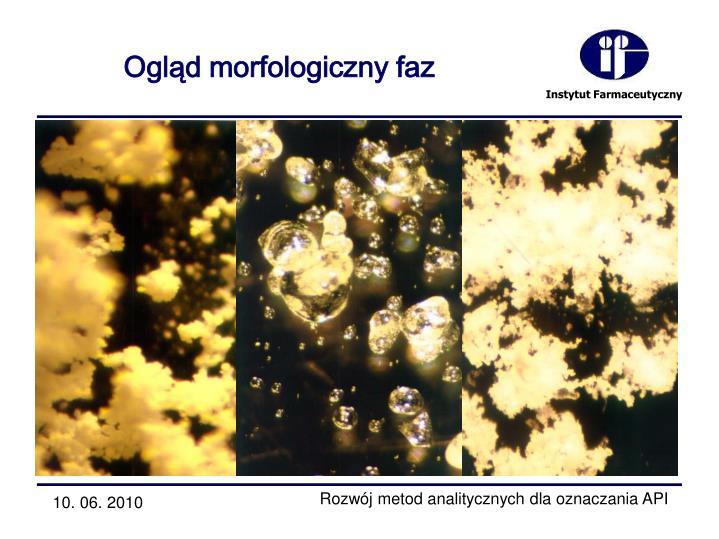 Ogląd morfologiczny faz