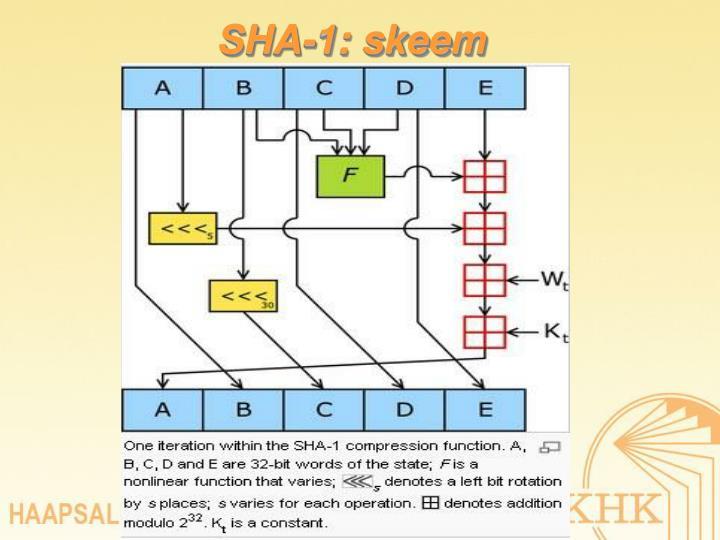 SHA-1: skeem
