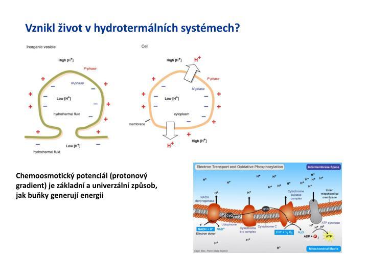 Vznikl život v hydrotermálních