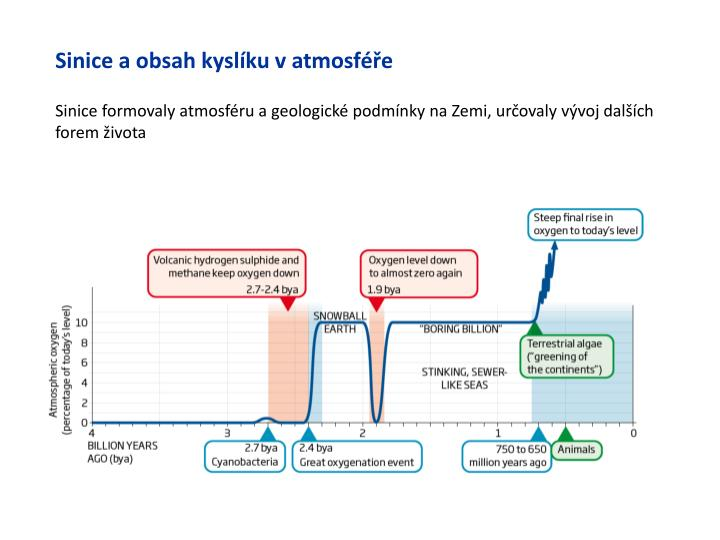 Sinice a obsah kyslíku v atmosféře