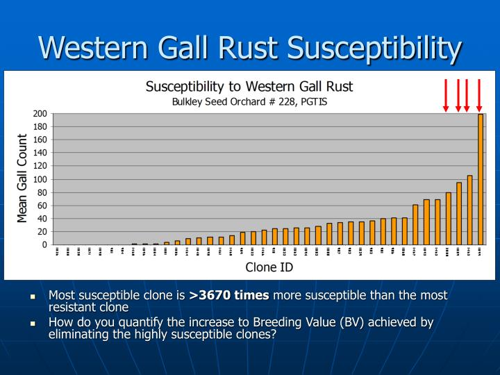 Western Gall Rust Susceptibility