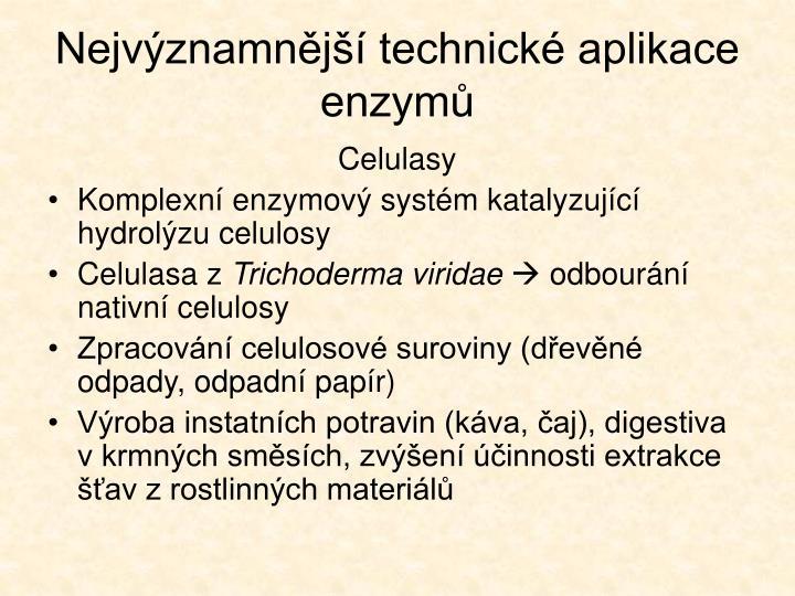 Nejvýznamnější technické aplikace enzymů