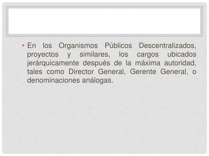 En los Organismos Públicos Descentralizados, proyectos y similares, los cargos ubicados jerárquicamente después de la máxima autoridad, tales como Director General, Gerente General, o denominaciones análogas.