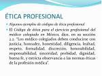 tica profesional42