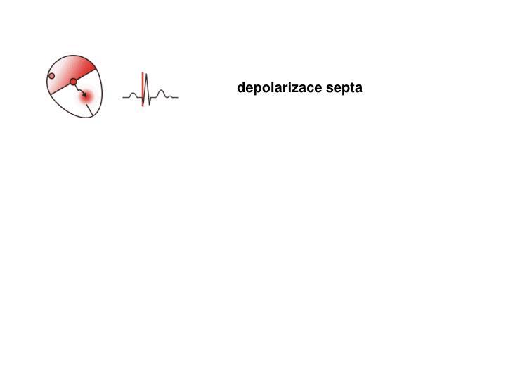 depolarizace septa