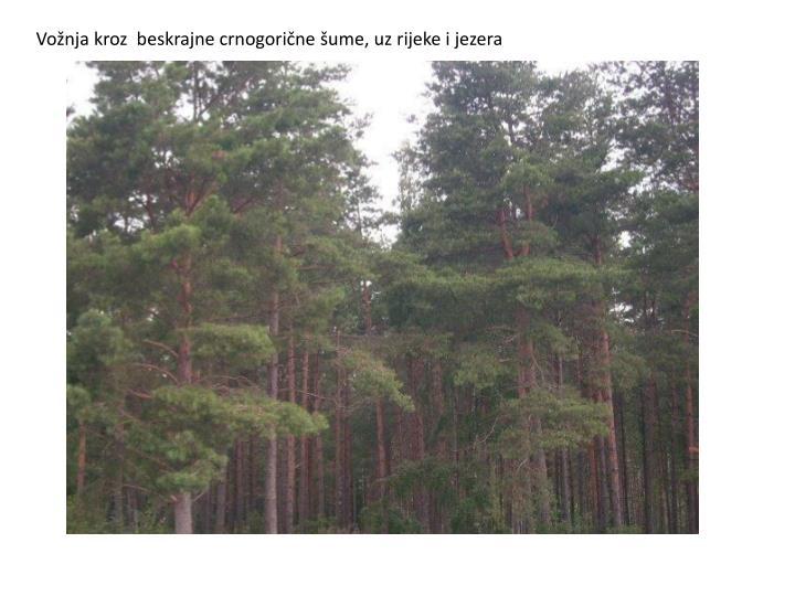 Vožnja kroz  beskrajne crnogorične šume, uz rijeke i jezera